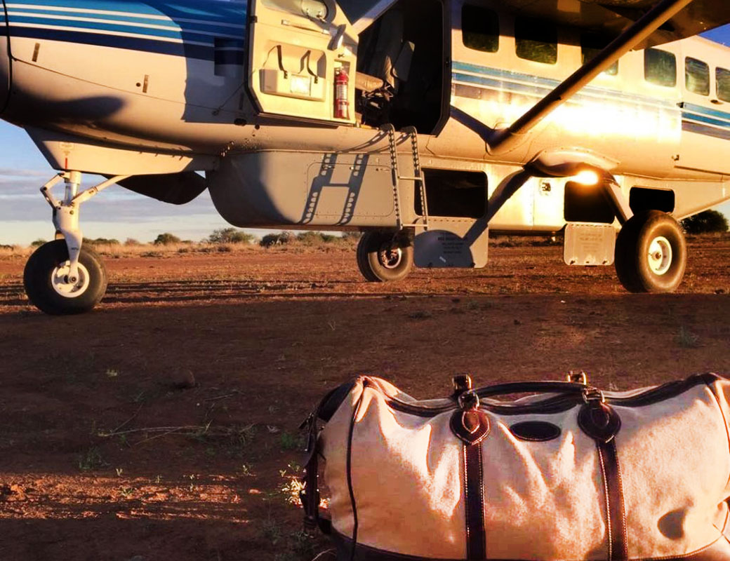 Holiday Luggage: Focus on Canvas